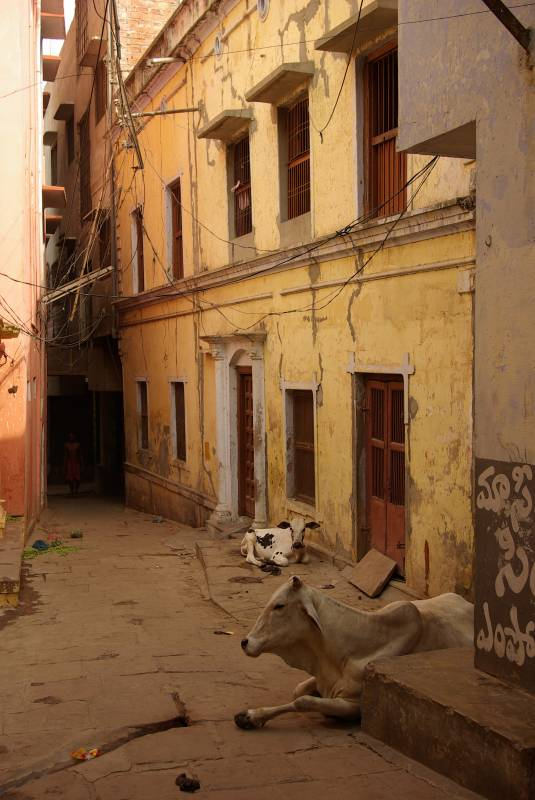 Narrow Varanasi alley.