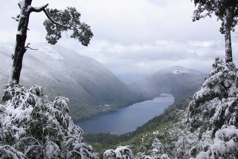 Tinquilco lake in the Huerquehue national park.