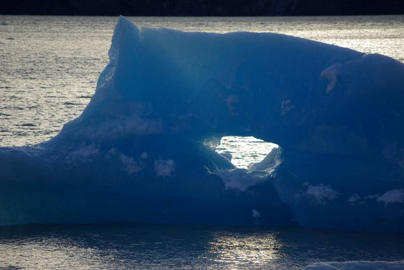 Lago Grey ice sculptures.