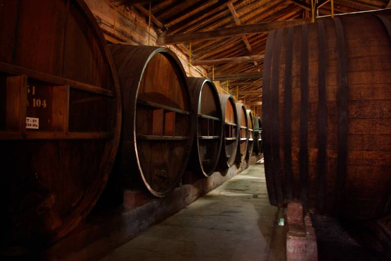 Oak barrels in a Maipu winery.